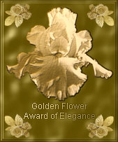 Web Creations Golden Flower Award