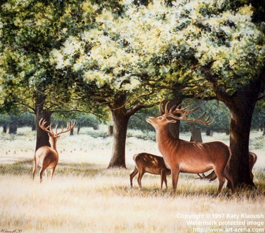 The Richmond Deer